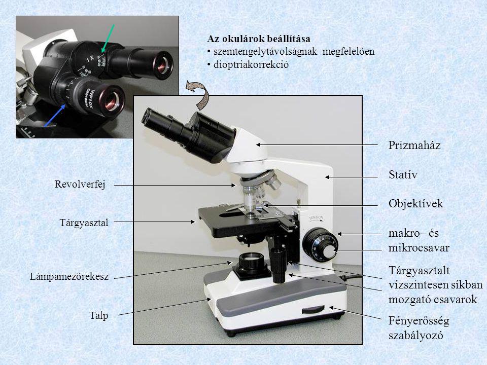 Prizmaház Statív Objektívek makro– és mikrocsavar Tárgyasztalt vízszintesen síkban mozgató csavarok Fényerősség szabályozó Revolverfej Tárgyasztal Lám