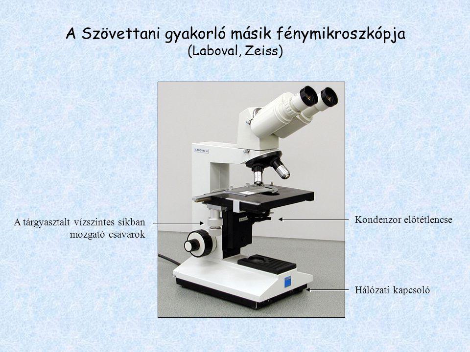 A Szövettani gyakorló másik fénymikroszkópja (Laboval, Zeiss) A tárgyasztalt vízszintes síkban mozgató csavarok Kondenzor előtétlencse Hálózati kapcso