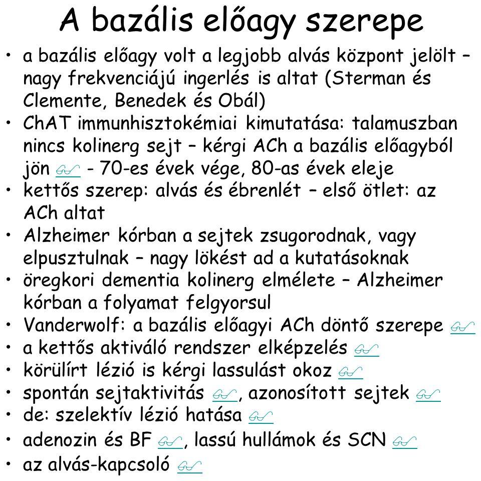Sejttípusok a BF-ben Duque,A. at al., J. Neurophysiol., 84:1627-1635,2000