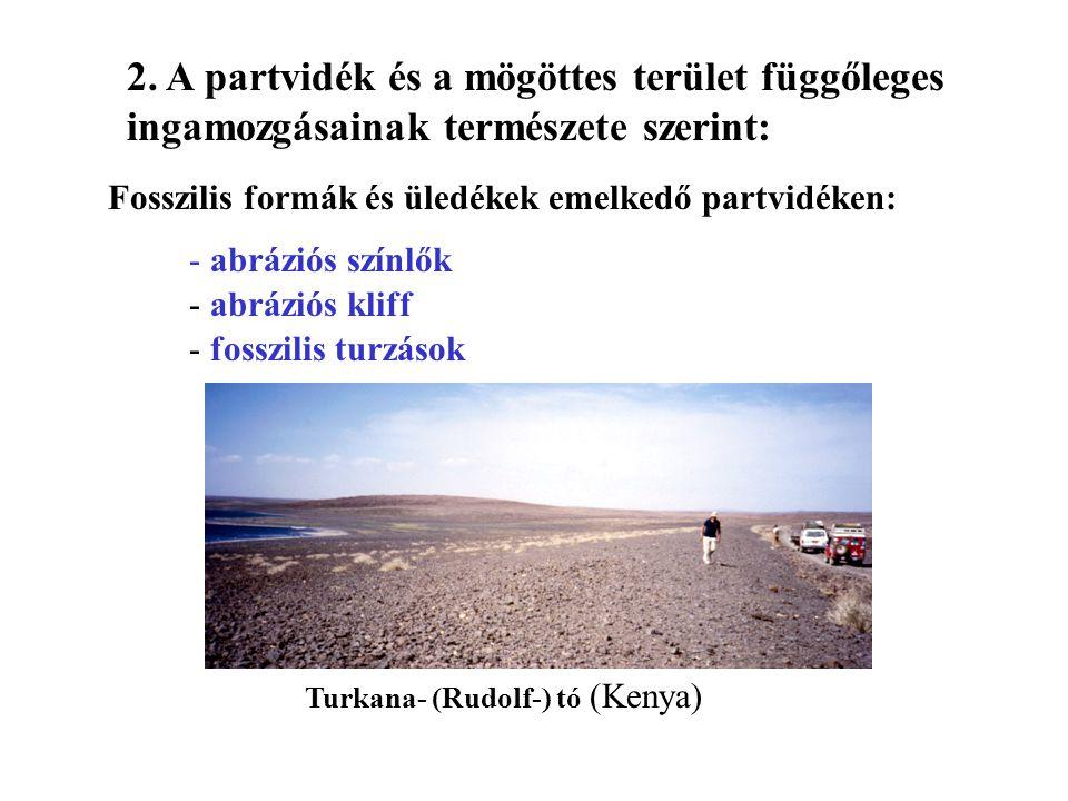 Fosszilis formák és üledékek emelkedő partvidéken: - abráziós színlők - abráziós kliff - fosszilis turzások Turkana- (Rudolf-) tó (Kenya) 2. A partvid