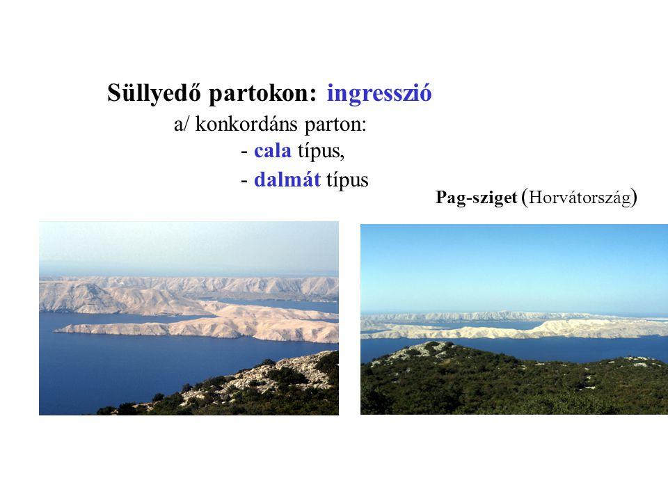 Süllyedő partokon: ingresszió a/ konkordáns parton: - cala típus, - dalmát típus Pag-sziget ( Horvátország )