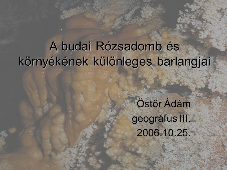 A budai Rózsadomb és környékének különleges barlangjai Östör Ádám geográfus III. 2006.10.25.