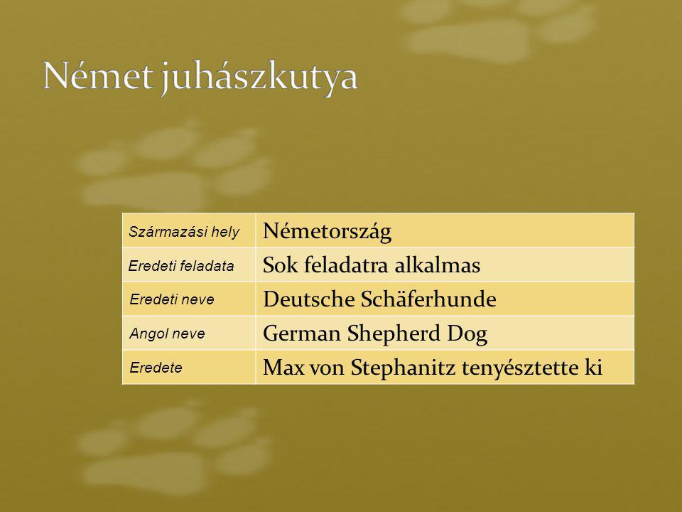 Származási hely Németország Eredeti feladata Sok feladatra alkalmas Eredeti neve Deutsche Schäferhunde Angol neve German Shepherd Dog Eredete Max von