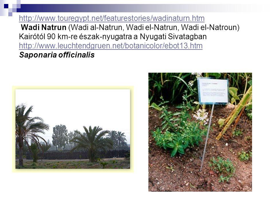 http://www.touregypt.net/featurestories/wadinaturn.htm http://www.touregypt.net/featurestories/wadinaturn.htm Wadi Natrun (Wadi al-Natrun, Wadi el-Nat