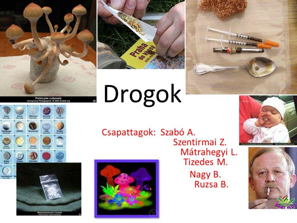 Drogok Csapattagok: Szabó A. Szentirmai Z. Mátrahegyi L. Tizedes M. Nagy B. Ruzsa B.