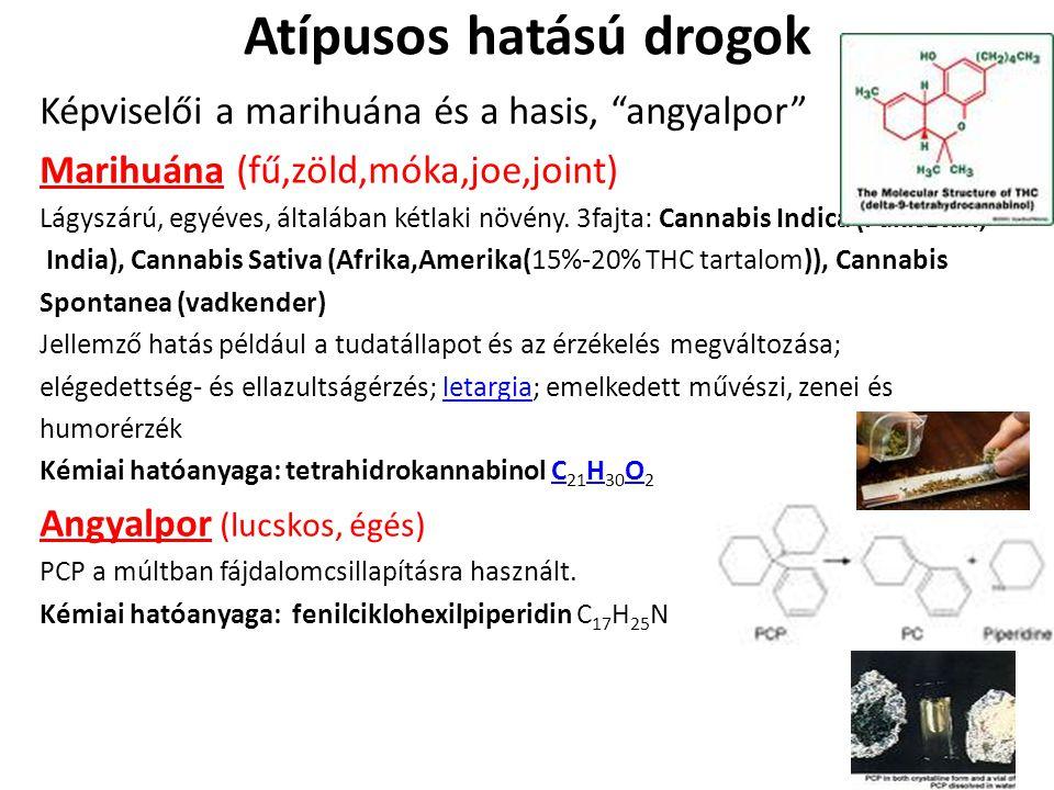 """Atípusos hatású drogok Képviselői a marihuána és a hasis, """"angyalpor"""" Marihuána (fű,zöld,móka,joe,joint) Lágyszárú, egyéves, általában kétlaki növény."""