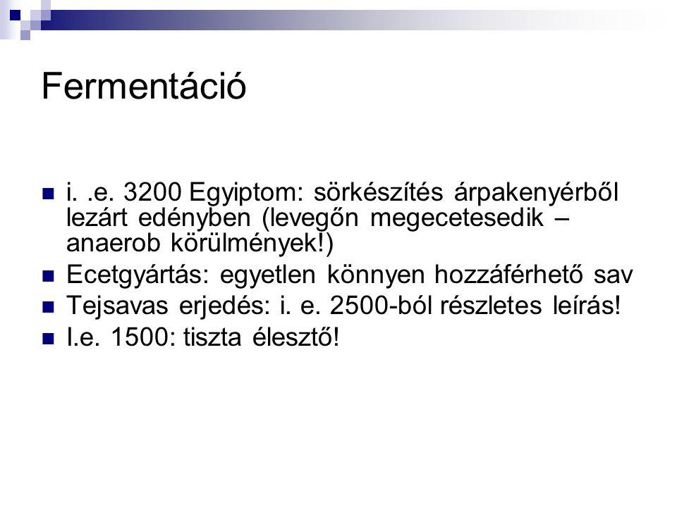 Fermentáció i..e. 3200 Egyiptom: sörkészítés árpakenyérből lezárt edényben (levegőn megecetesedik – anaerob körülmények!) Ecetgyártás: egyetlen könnye