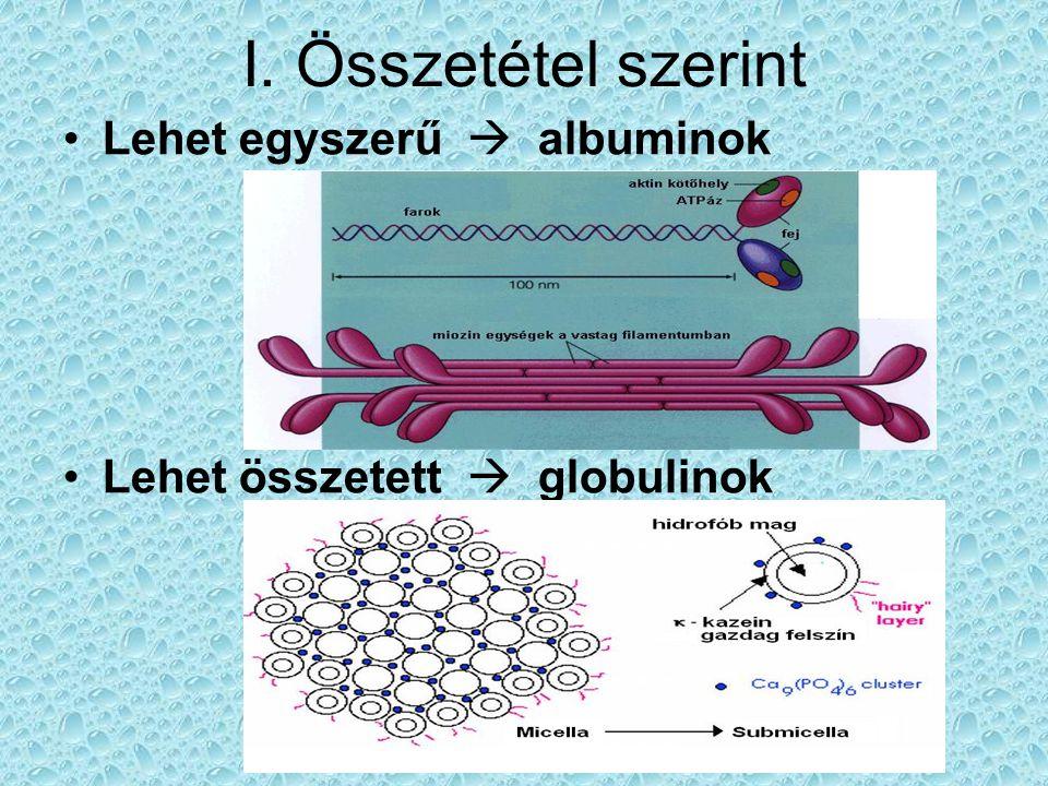 I. Összetétel szerint Lehet egyszerű  albuminok Lehet összetett  globulinok