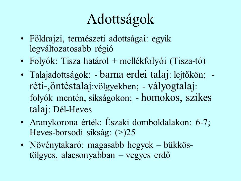 Adottságok Földrajzi, természeti adottságai: egyik legváltozatosabb régió Folyók: Tisza határol + mellékfolyói (Tisza-tó) Talajadottságok: - barna erd