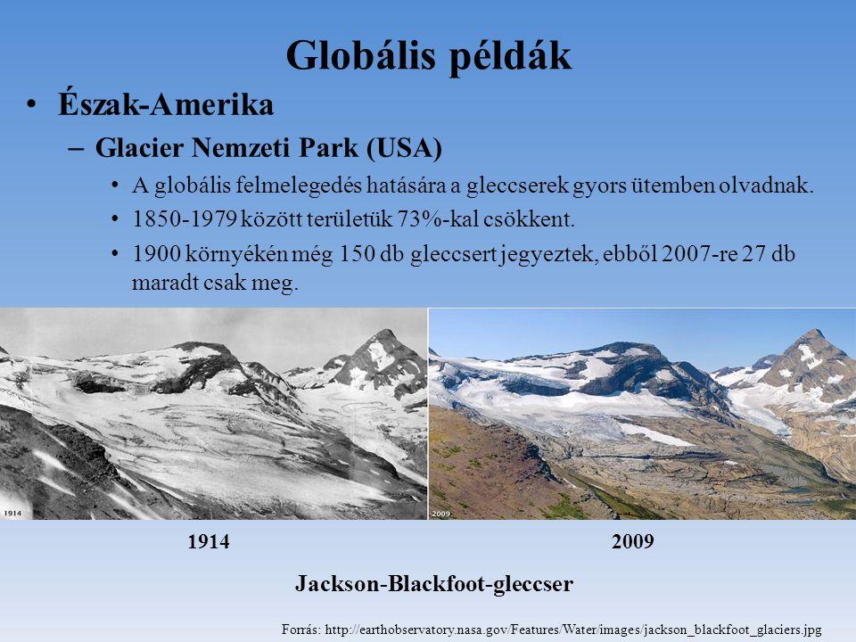 Globális példák Észak-Amerika – Glacier Nemzeti Park (USA) A globális felmelegedés hatására a gleccserek gyors ütemben olvadnak. 1850-1979 között terü