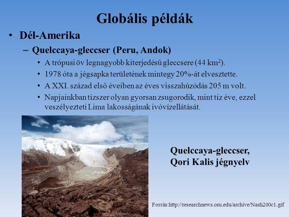 Globális példák Dél-Amerika – Quelccaya-gleccser (Peru, Andok) A trópusi öv legnagyobb kiterjedésű gleccsere (44 km 2 ). 1978 óta a jégsapka területén