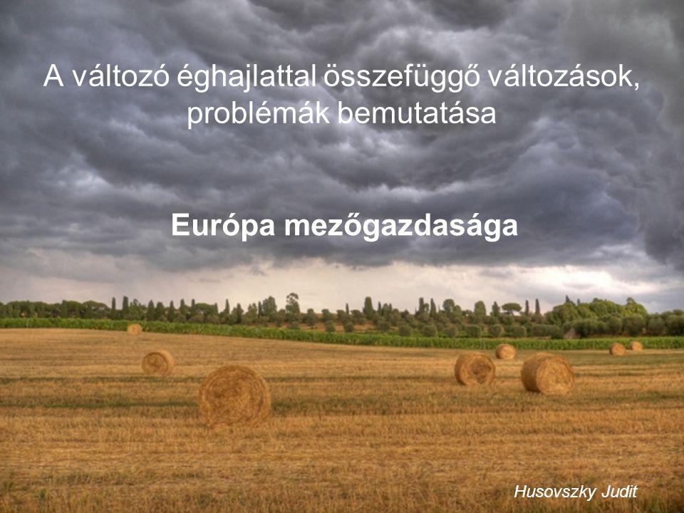 A klíma változása Európában Hőmérséklet: Jövőben Globálisan: 2100-ra +1,1-6,4°C becslés Szárazföldeken intenzívebb hőmérséklet emelkedés.