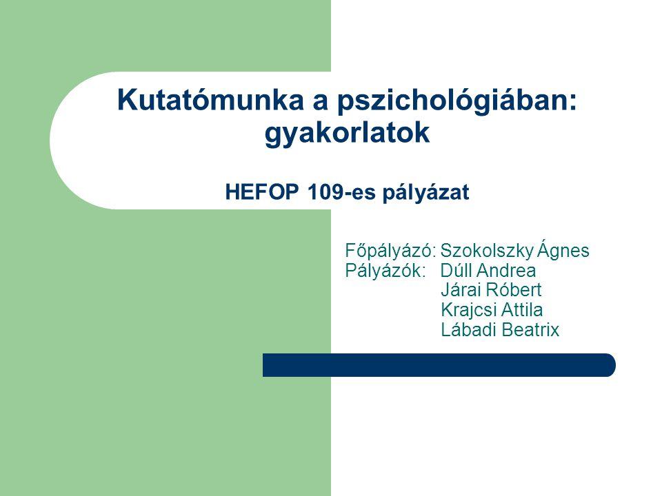 Kutatómunka a pszichológiában: gyakorlatok HEFOP 109-es pályázat Főpályázó: Szokolszky Ágnes Pályázók: Dúll Andrea Járai Róbert Krajcsi Attila Lábadi