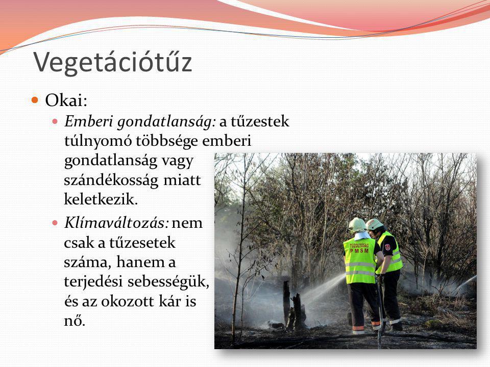 Vegetációtűz Okai: Emberi gondatlanság: a tűzestek túlnyomó többsége emberi gondatlanság vagy szándékosság miatt keletkezik. Klímaváltozás: nem csak a