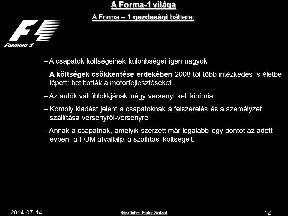 Készítette: Fodor Szilárd 2014. 07. 14. A Forma-1 világa 12 A Forma – 1 gazdasági háttere: Az első évben – A csapatok költségeinek különbségei igen na