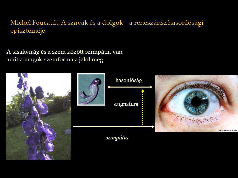 Michel Foucault: A szavak és a dolgok – a reneszánsz hasonlósági episztéméje A sisakvirág és a szem között szimpátia van amit a magok szemformája jelö