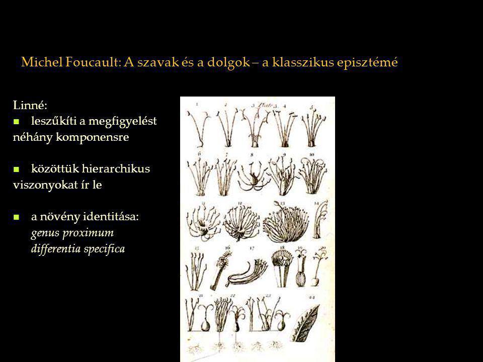 Michel Foucault: A szavak és a dolgok – a klasszikus episztémé Linné: leszűkíti a megfigyelést néhány komponensre közöttük hierarchikus viszonyokat ír