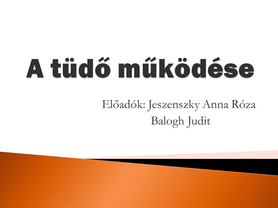 Előadók: Jeszenszky Anna Róza Balogh Judit