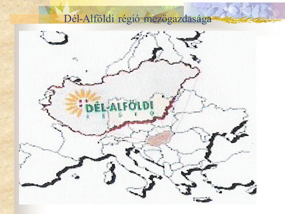 Dél-Alföldi régió mezőgazdasága