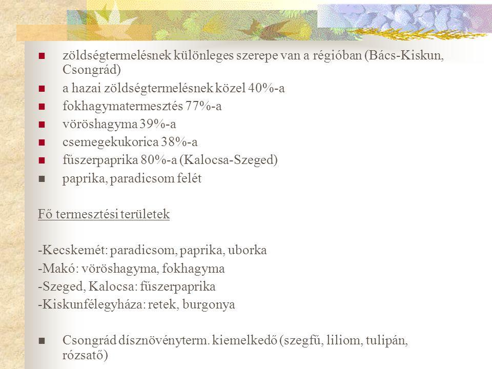 zöldségtermelésnek különleges szerepe van a régióban (Bács-Kiskun, Csongrád) a hazai zöldségtermelésnek közel 40%-a fokhagymatermesztés 77%-a vöröshagyma 39%-a csemegekukorica 38%-a fűszerpaprika 80%-a (Kalocsa-Szeged) paprika, paradicsom felét Fő termesztési területek -Kecskemét: paradicsom, paprika, uborka -Makó: vöröshagyma, fokhagyma -Szeged, Kalocsa: fűszerpaprika -Kiskunfélegyháza: retek, burgonya Csongrád dísznövényterm.