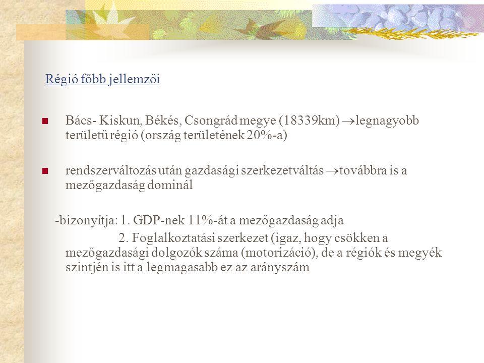 Régió főbb jellemzői Bács- Kiskun, Békés, Csongrád megye (18339km)  legnagyobb területű régió (ország területének 20%-a) rendszerváltozás után gazdasági szerkezetváltás  továbbra is a mezőgazdaság dominál -bizonyítja: 1.