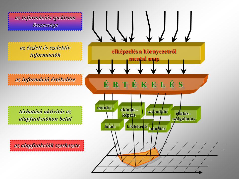 az információs spektrum összessége elképzelés a környezetről mental map az észlelt és szelektív információk É R T É K E L É S közlekedés oktatás - képzés lokalitás szabadidő ellátás - szolgáltatás az információ értékelése térhatású aktivitás az alapfunkciókon belül az alapfunkciók szerkezete lakás munka