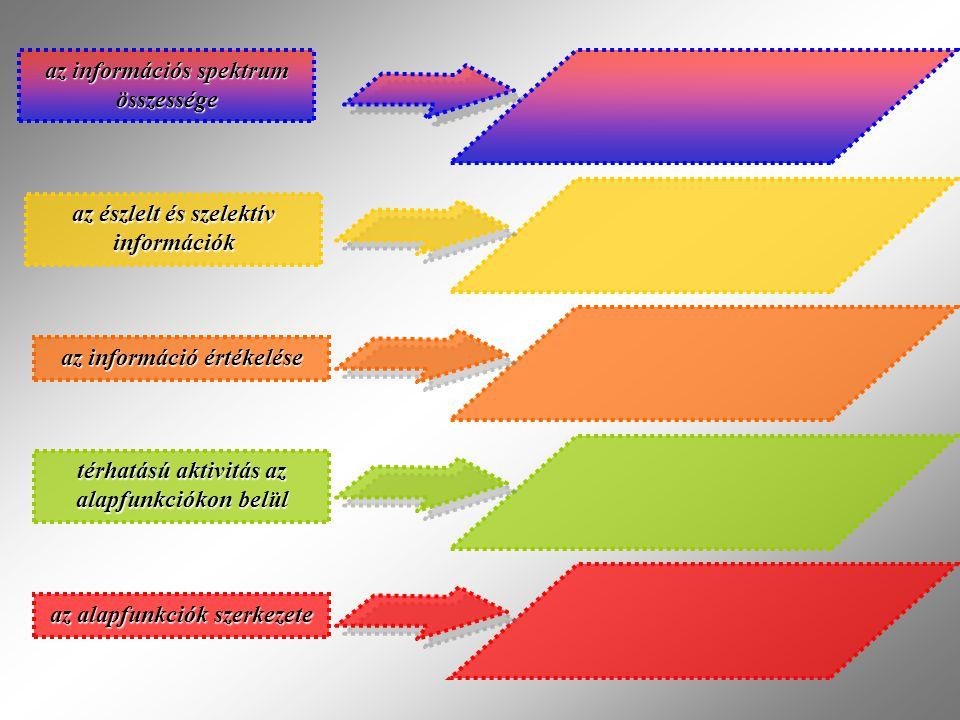 az információs spektrum összessége az észlelt és szelektív információk az információ értékelése térhatású aktivitás az alapfunkciókon belül az alapfunkciók szerkezete