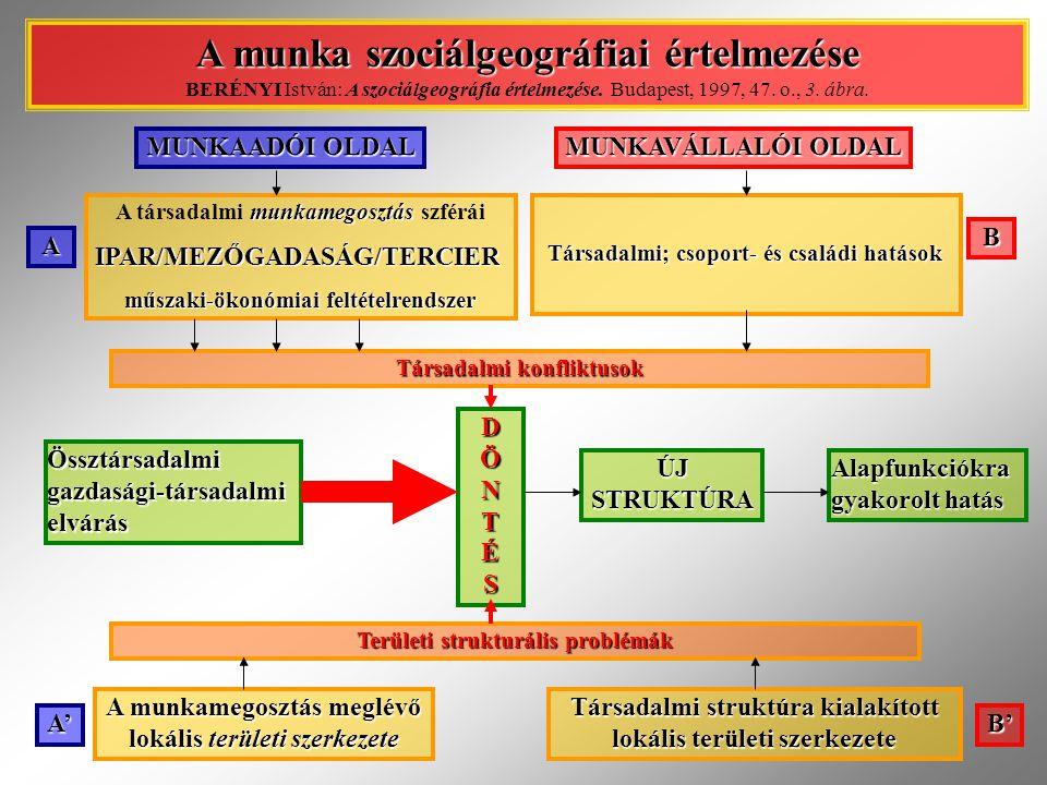 MUNKAADÓI OLDAL MUNKAVÁLLALÓI OLDAL munkamegosztás A társadalmi munkamegosztás szférái IPAR/MEZŐGADASÁG/TERCIER IPAR/MEZŐGADASÁG/TERCIER műszaki-ökonó