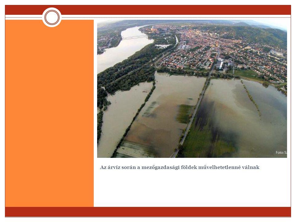 Az árvíz során a mezőgazdasági földek művelhetetlenné válnak