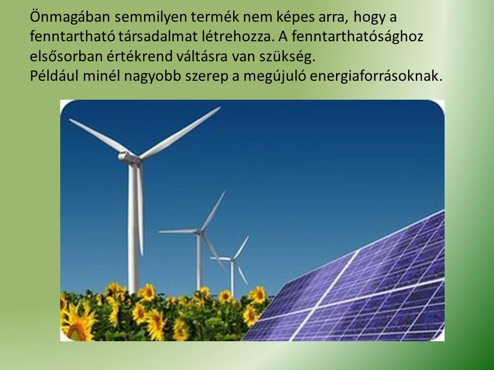 Önmagában semmilyen termék nem képes arra, hogy a fenntartható társadalmat létrehozza. A fenntarthatósághoz elsősorban értékrend váltásra van szükség.