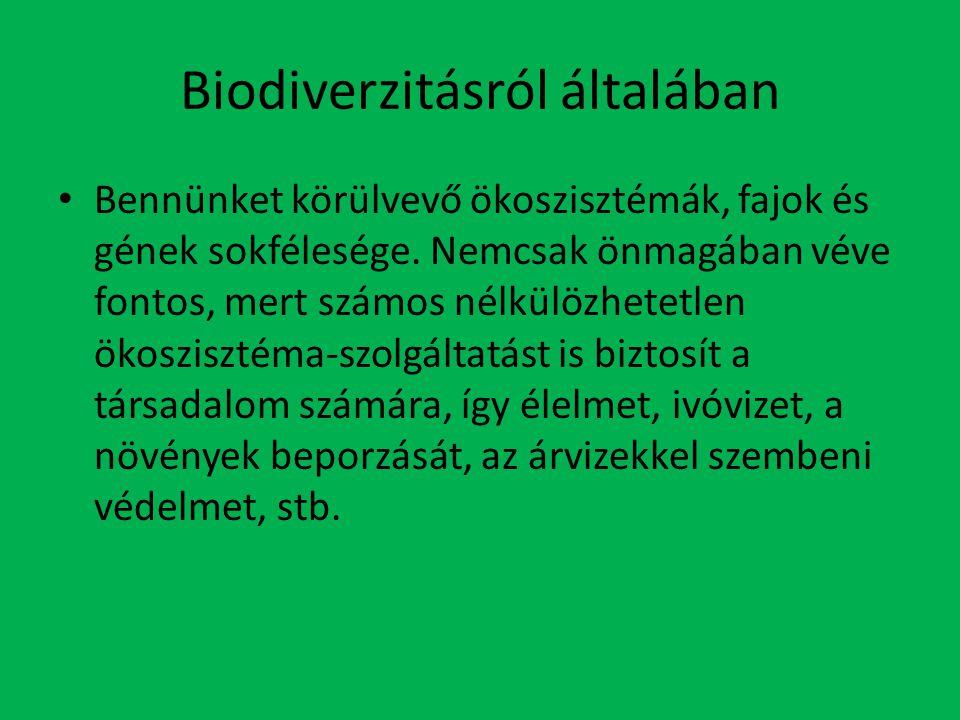 Biodiverzitásról általában Bennünket körülvevő ökoszisztémák, fajok és gének sokfélesége.
