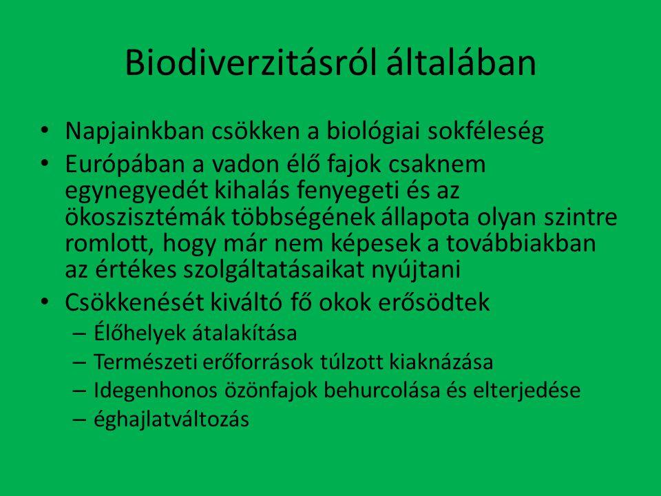 Biodiverzitásról általában Napjainkban csökken a biológiai sokféleség Európában a vadon élő fajok csaknem egynegyedét kihalás fenyegeti és az ökoszisztémák többségének állapota olyan szintre romlott, hogy már nem képesek a továbbiakban az értékes szolgáltatásaikat nyújtani Csökkenését kiváltó fő okok erősödtek – Élőhelyek átalakítása – Természeti erőforrások túlzott kiaknázása – Idegenhonos özönfajok behurcolása és elterjedése – éghajlatváltozás