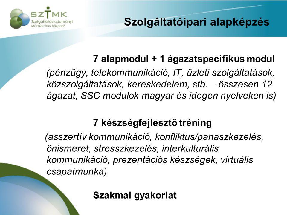 Szolgáltatóipari alapképzés 7 alapmodul + 1 ágazatspecifikus modul (pénzügy, telekommunikáció, IT, üzleti szolgáltatások, közszolgáltatások, kereskedelem, stb.