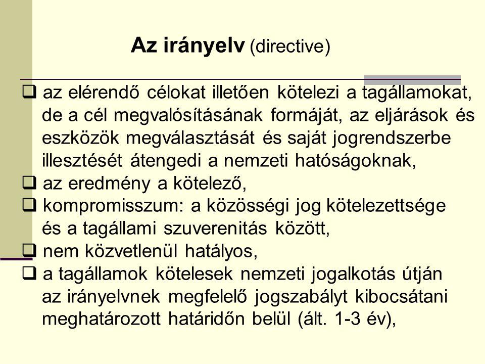 Az irányelv (directive)  az elérendő célokat illetően kötelezi a tagállamokat, de a cél megvalósításának formáját, az eljárások és eszközök megválasz