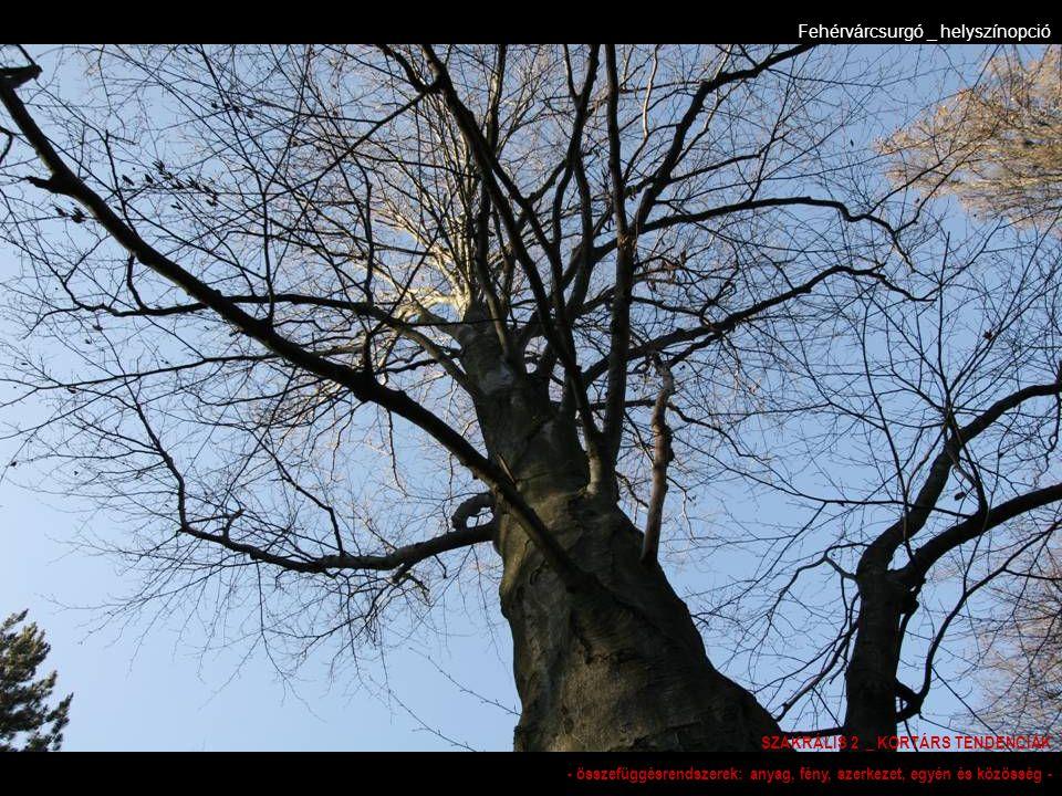 Fehérvárcsurgó _ helyszínopció SZAKRÁLIS 2 _ KORTÁRS TENDENCIÁK - összefüggésrendszerek: anyag, fény, szerkezet, egyén és közösség -