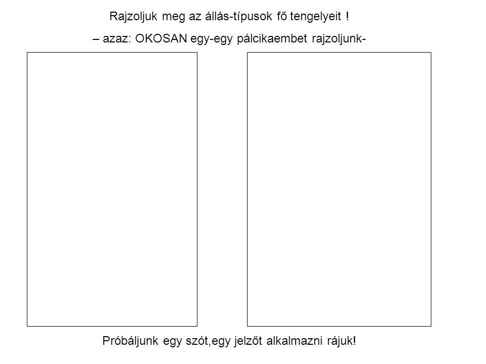 Rajzoljuk meg az állás-típusok fő tengelyeit ! – azaz: OKOSAN egy-egy pálcikaembet rajzoljunk- Próbáljunk egy szót,egy jelzőt alkalmazni rájuk!