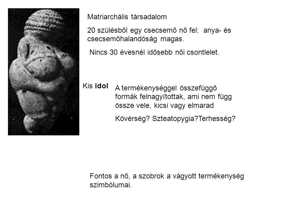 szteatopygia = zsírfarúság Zsírtárolás a nehéz időkben - i.e.