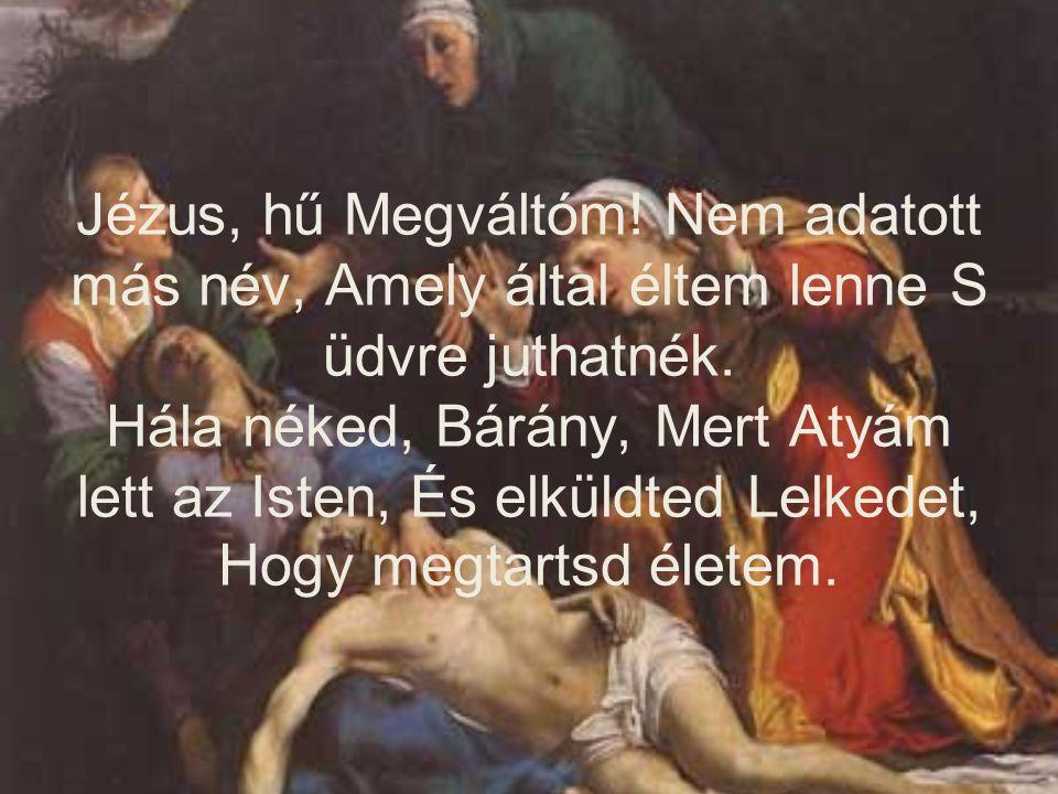 Jézus, hű Megváltóm! Nem adatott más név, Amely által éltem lenne S üdvre juthatnék. Hála néked, Bárány, Mert Atyám lett az Isten, És elküldted Lelked