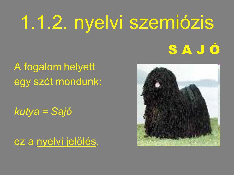 1.1.2. nyelvi szemiózis S A J Ó A fogalom helyett egy szót mondunk: kutya = Sajó ez a nyelvi jelölés.