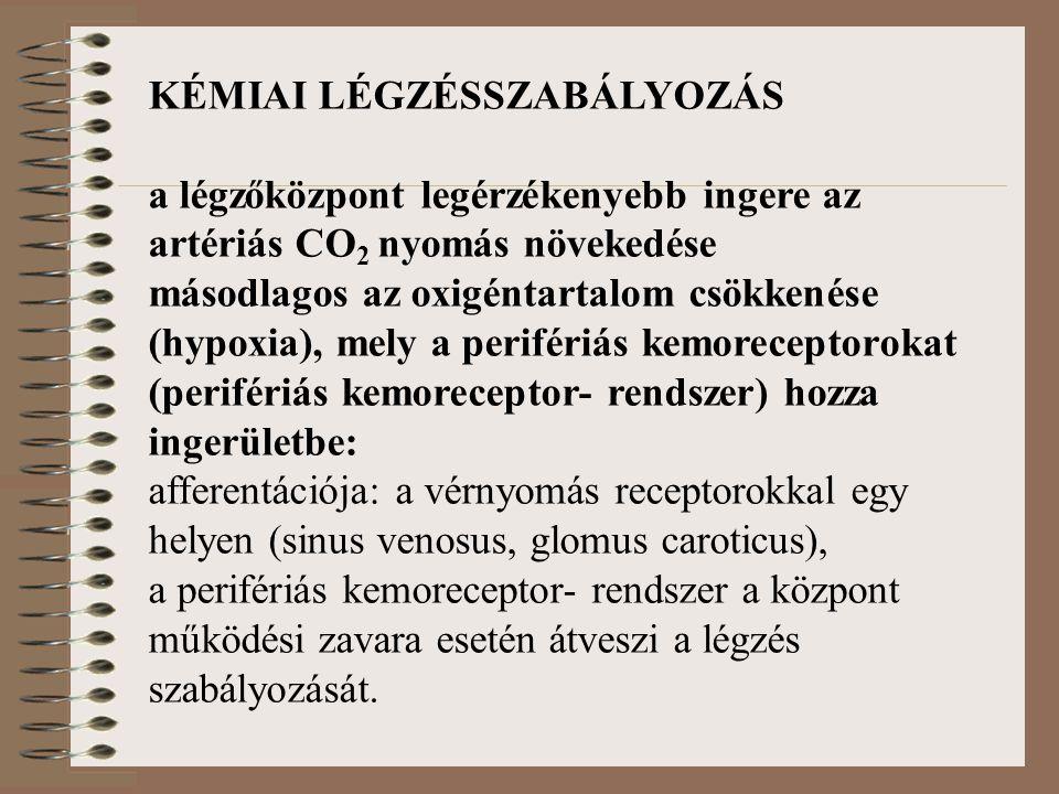 KÉMIAI LÉGZÉSSZABÁLYOZÁS a légzőközpont legérzékenyebb ingere az artériás CO 2 nyomás növekedése másodlagos az oxigéntartalom csökkenése (hypoxia), mely a perifériás kemoreceptorokat (perifériás kemoreceptor- rendszer) hozza ingerületbe: afferentációja: a vérnyomás receptorokkal egy helyen (sinus venosus, glomus caroticus), a perifériás kemoreceptor- rendszer a központ működési zavara esetén átveszi a légzés szabályozását.