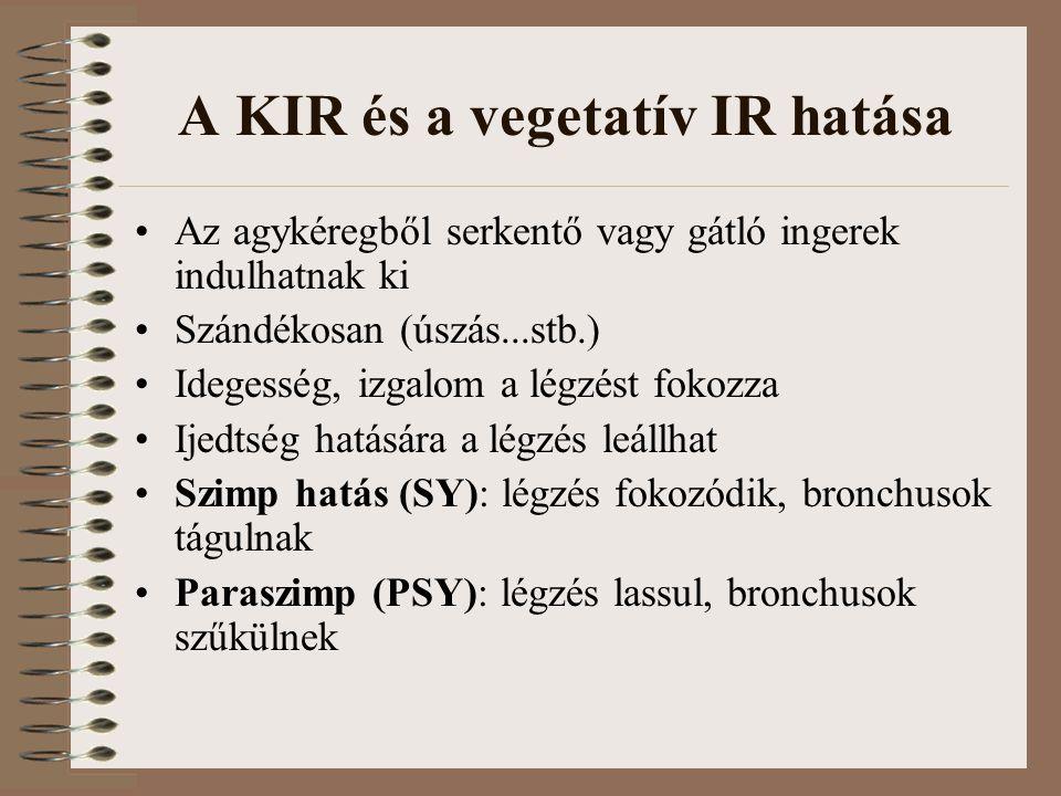 A KIR és a vegetatív IR hatása Az agykéregből serkentő vagy gátló ingerek indulhatnak ki Szándékosan (úszás...stb.) Idegesség, izgalom a légzést fokozza Ijedtség hatására a légzés leállhat Szimp hatás (SY): légzés fokozódik, bronchusok tágulnak Paraszimp (PSY): légzés lassul, bronchusok szűkülnek