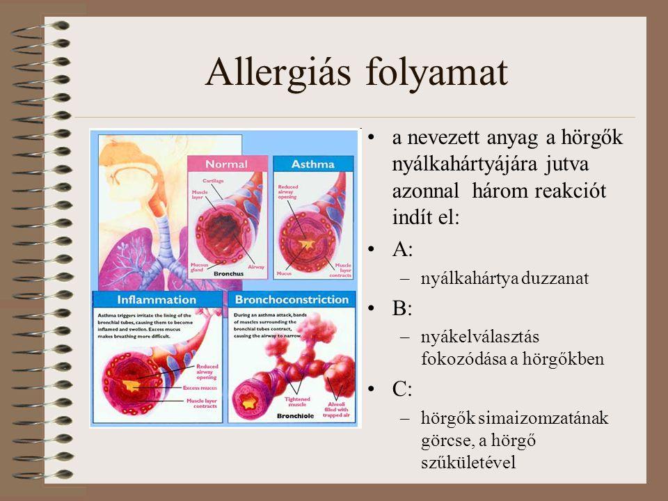 Allergiás folyamat a nevezett anyag a hörgők nyálkahártyájára jutva azonnal három reakciót indít el: A: –nyálkahártya duzzanat B: –nyákelválasztás fokozódása a hörgőkben C: –hörgők simaizomzatának görcse, a hörgő szűkületével
