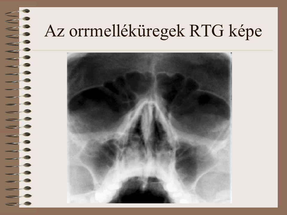 A garat Orr és szájüreg mögött, izmos falú cső, felső végével a koponya alaphoz rögzül 3 rész: orri szakasz száji szakasz gégei szakasz
