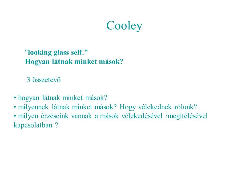 Cooley looking glass self. Hogyan látnak minket mások.