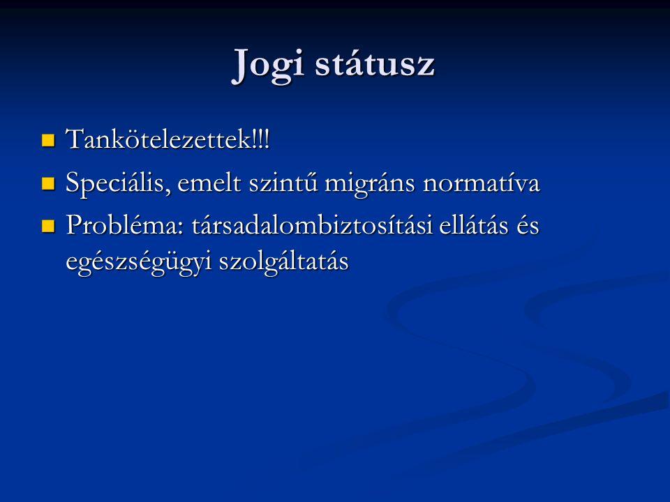 Jogi státusz Tankötelezettek!!! Tankötelezettek!!! Speciális, emelt szintű migráns normatíva Speciális, emelt szintű migráns normatíva Probléma: társa