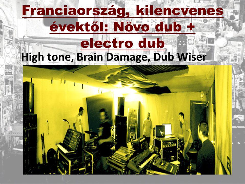 Németország, 2000-es évek: dub techno + 8 bit