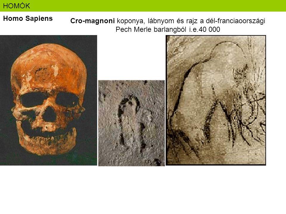 HOMÓK Homo Sapiens Cro-magnoni koponya, lábnyom és rajz a dél-franciaoországi Pech Merle barlangból i.e.40 000
