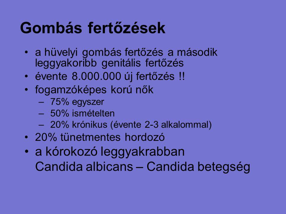 Gombás fertőzések a hüvelyi gombás fertőzés a második leggyakoribb genitális fertőzés évente 8.000.000 új fertőzés !! fogamzóképes korú nők – 75% egys