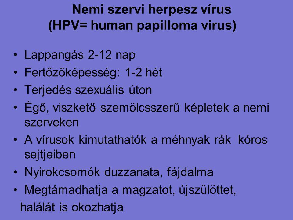Nemi szervi herpesz vírus (HPV= human papilloma virus) Lappangás 2-12 nap Fertőzőképesség: 1-2 hét Terjedés szexuális úton Égő, viszkető szemölcsszerű