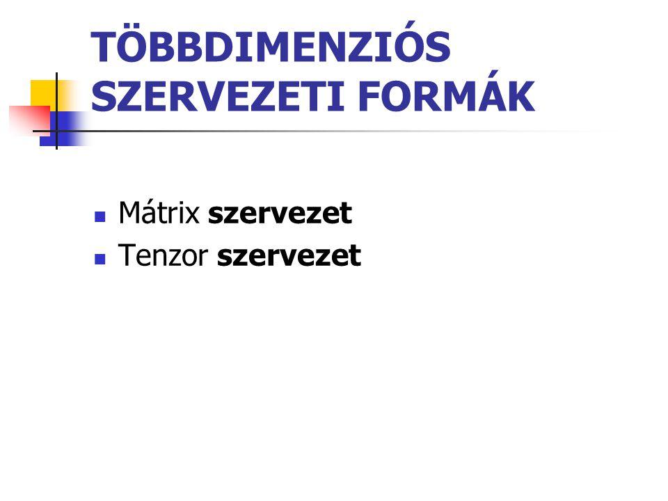 TÖBBDIMENZIÓS SZERVEZETI FORMÁK Mátrix szervezet Tenzor szervezet